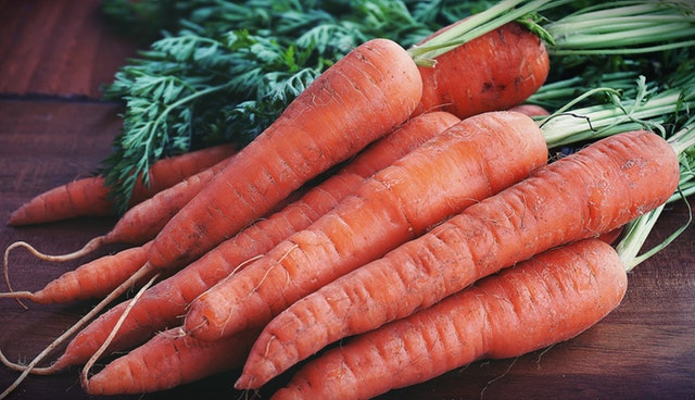Carrots easy grow vegetable