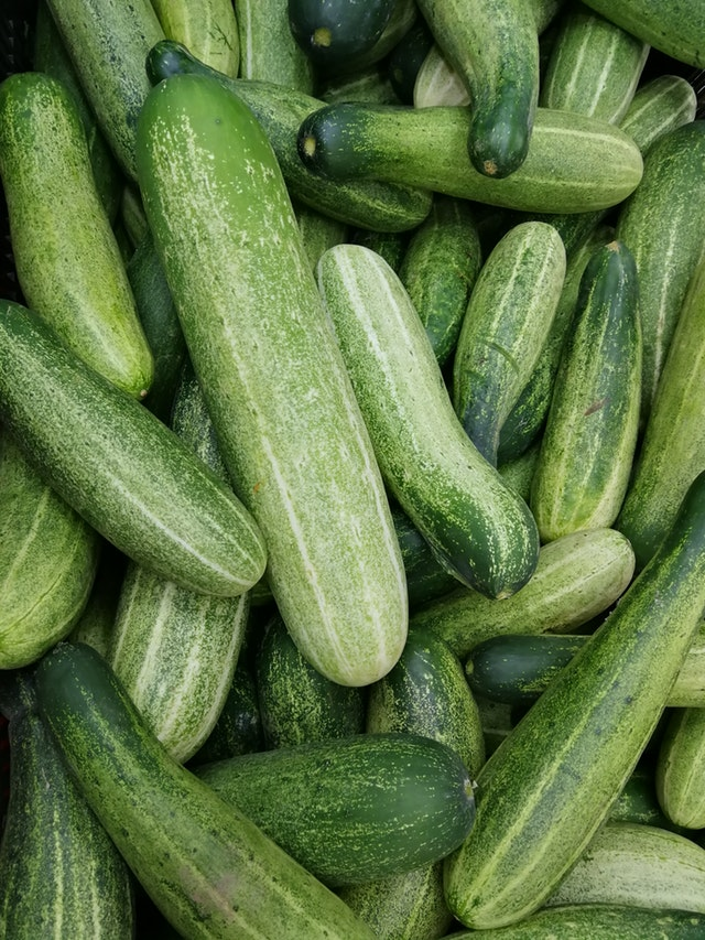 Cucumber easy grow vegetable